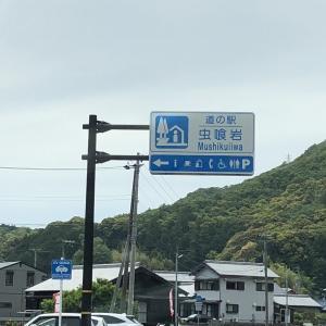 近畿・道の駅 虫喰岩(むしくいいわ)和歌山県