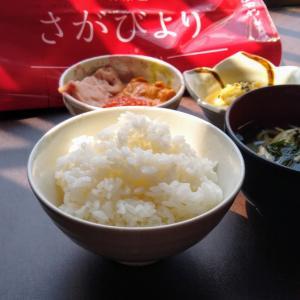 細長いお米が濃い具にも負けてない 佐賀県産さがびより