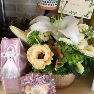 夢ちゃん 四十九日    モモちゃん 避妊手術