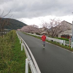月間走行距離が再び300キロを超えた3月~今日はエイプリルフール