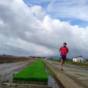 25km自撮り走とランニング中の転倒~今日は手羽先記念日