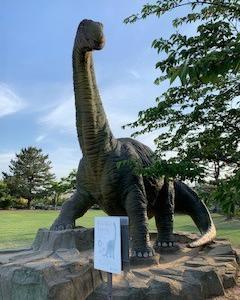 アスレチックが充実! 内灘 恐竜公園!