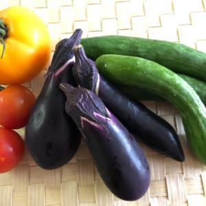 美味しいお野菜