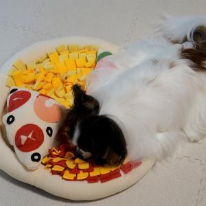 早食い防止、ピザのスナッフルマット