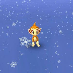 とうとう初雪。