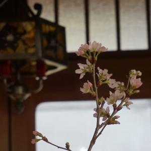 春は出会いと別れの季節・町内会協奏曲