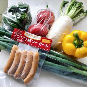 パンと朝採り野菜のBBQ