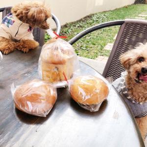カフェスロープさんのパンと、私の自家製