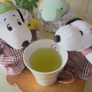緑茶うめぇ