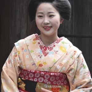 舞妓学校? の一年生  柚子葉さん   京都の友よりの写真と文