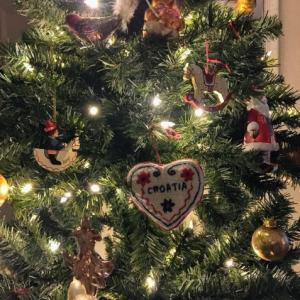 クリスマスさみしいモンちゃん