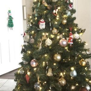誰も見ないクリスマスツリー
