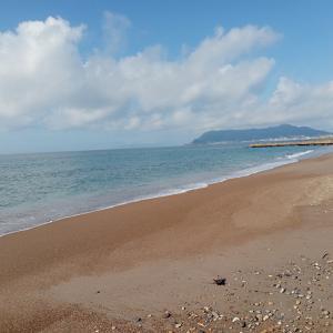 9月のビーチコーミング