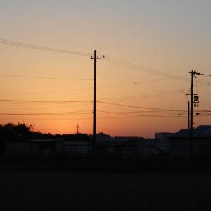すっかり秋です  涼しくなりました 朝晩の気温の差が 大きいです体調管理に気を付けましょう