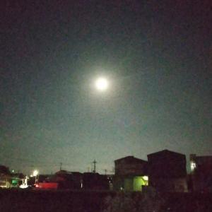 15夜お月さん お月見を