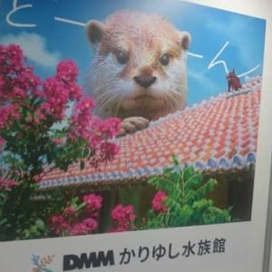 かりゆし水族館のポスター