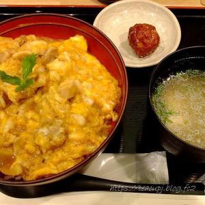名古屋コーチンやっぱり深い味わいでした♪