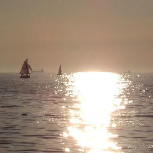 夕日が東京湾に沈む前は美しい時間です。