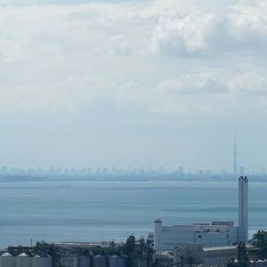 東京湾のはるか向こうに見えたスカイツリー♪