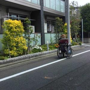 昨日の散歩(電動車椅子で)自宅から商店街まで