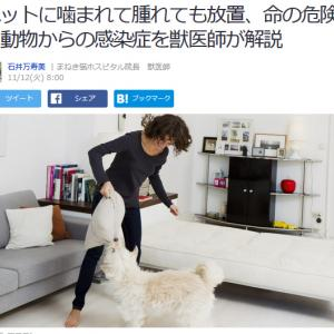 ■Yahoo!ニュース ペットに噛まれて腫れても放置、命の危険に 動物からの感染症を獣医師が解説