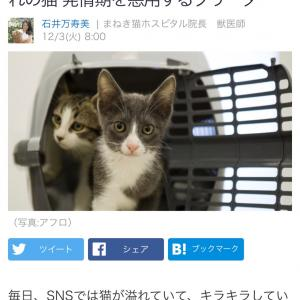 ■Yahoo!ニュース 自然界には存在しない12月〜2月生まれの猫 発情期を悪用するブリーダー
