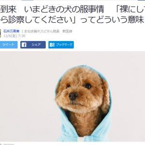 ■Yahoo!ニュース 冬到来 いまどきの犬の服事情「裸にしてから診察してください」ってどういう