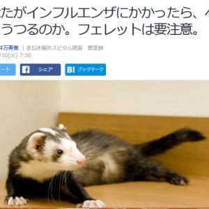 ■Yahoo!ニュース あなたがインフルエンザにかかったら、ペットにうつるのか。