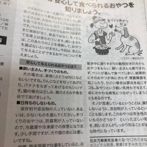 ■連載 雑誌「ステーション」ペットが安心して食べられるおやつを知りましょう。#オヤツ