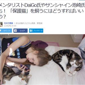 ■Yahoo!ニュース メンタリトDaiGo氏やサンシャイン池崎氏も!「保護猫」を飼うにはどう