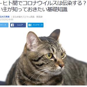 ■Yahoo!ニュース 猫ーヒト間でコロナウイルスは伝染する? 飼い主が知っておきたい基礎知識