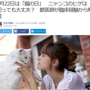 ■Yahoo!ニュース 2月22日は「猫の日」 ニャンコのヒゲは切っても大丈夫? 獣医師が臨床経