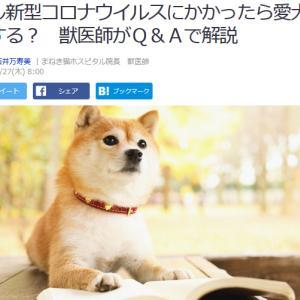 ■Yahoo!ニュース もし新型コロナウイルスにかかっら愛犬どうする?#新型コロナウイルス