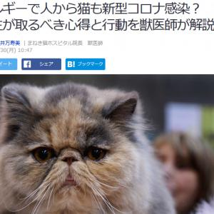 ■Yahoo!ニュース ベルギーで人から猫も新型コロナウイルス感染? 飼い主が取るべき心得と行動