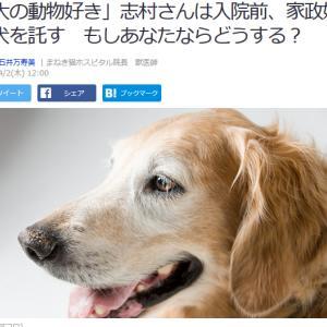 ■Yahoo!ニュース 「大の動物好き」志村さんは入院前、家政婦に犬を託す もしあなたなら