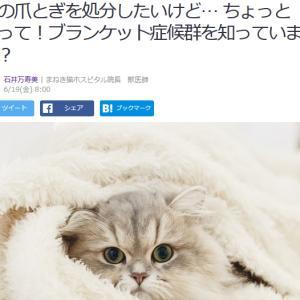 ■Yahoo!ニュース 猫の爪とぎを処分したいけど… ちょっと待って!ブランケット症候群を知って