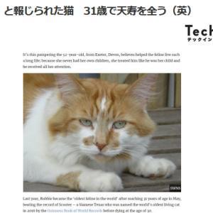 ■ネコ 世界一長寿猫 31歳