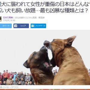 ■Yahoo!ニュース 闘犬に襲われて女性が重傷の日本はどんなヤバい犬も飼い放題…最も凶暴な種類
