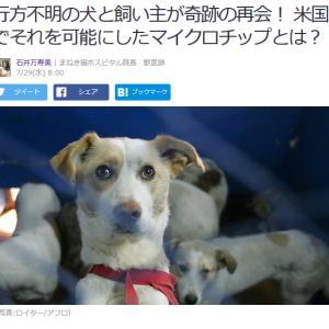 ■Yahoo!ニュース 行方不明の犬と飼い主が奇跡の再会! 米国でそれを可能にしたマイクロチップ