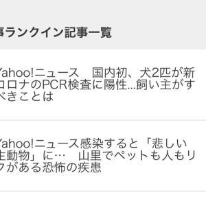 ■祝 人気記事ランクイン Yahooニュース