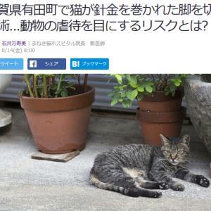 ■Yahoo!ニュース 佐賀県有田町で猫が針金を巻かれた脚を切断手術...動物の虐待