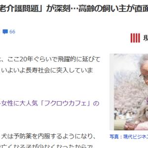 ■現代ビジネス 「老老介護問題」が深刻…高齢の飼い主が直面する「厳しい現実」Yahoo版