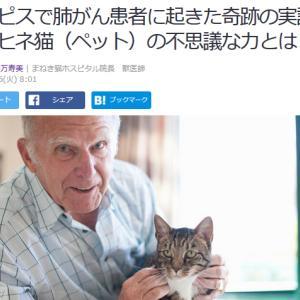 ■Yahoo!ニュース ホスピスで肺がん患者に起きた奇跡の実話 モルヒネ猫(ペット)の不思議な力