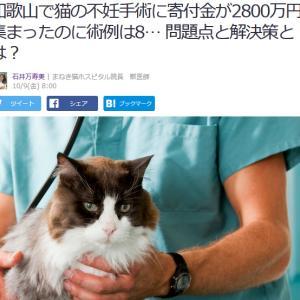 ■Yahoo!ニュース 和歌山で猫の不妊手術に寄付金が2800万円集まったのに術例は8匹だけ