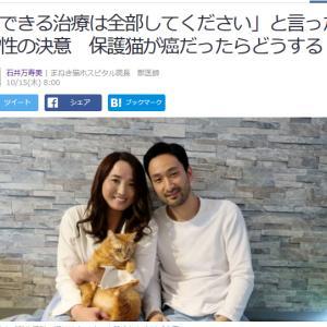 ■Yahoo!ニュース 「できる治療は全部してください」と言った男性の決意 保護猫が癌だったら