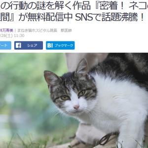 ■Yahoo!ニュース  ネコの行動の謎を解く作品『密着! ネコの一週間』が無料配信中 SNS
