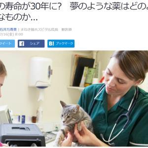 ■Yahooニュース 猫の寿命が30年に? 夢のような薬はどのようなものか...