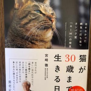 ■ネコ 猫の【腎不全の薬AIM】の東大の宮崎徹先生にお尋ねしたいことを募集中!