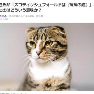 ■Yahooニュース ひろゆき氏が「スコティッシュフォールドは『病気の猫』」と一石を投じたのはど