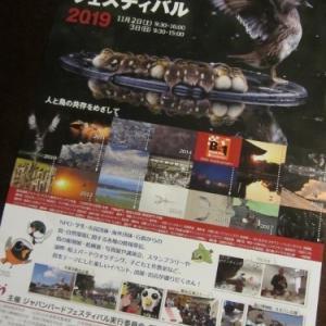 ジャパンバードフェスティバル2019